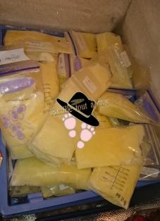 Conservation du lait maternel au congélateur par une tire allaitante exclusive