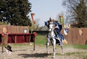 Chevalier de peyrolles en provence