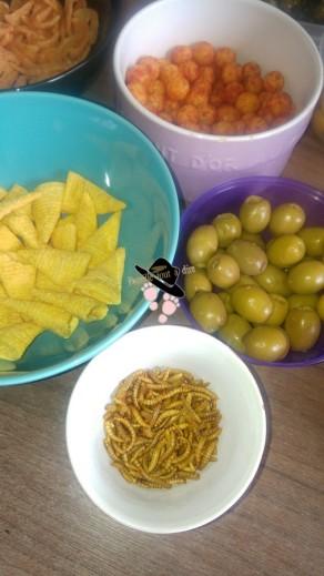 Futura Food insectes comestibles à l'apéro