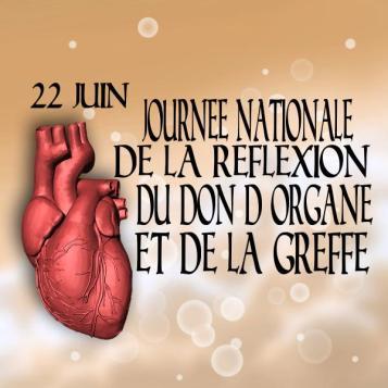 journée de la réflexion du don d'organe et de la greffe