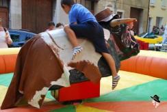 stand taureau machine à soirée américaine à Tourves