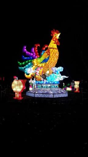 coq lanternes chinoises aux fééries de chine à gaillac famille tout à dire