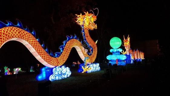 dragons en lanternes chinoises gaillac famille tout à dire