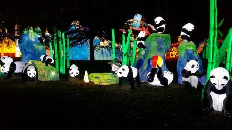 famille panda en lanternes chinoises aux fééries de chine à gaillac famille tout à dire