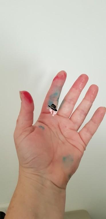 teintures de colorant Famille Tout à Dire