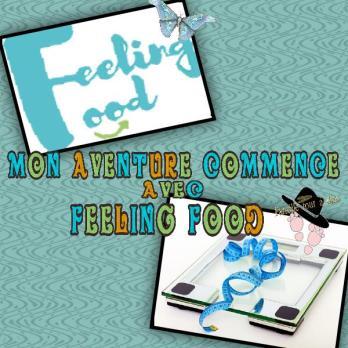 Mon avis et aventure qui commence avec Feeling Food Famille Tout à Dire