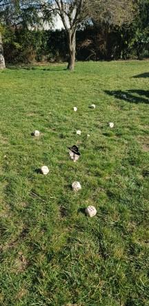 Test partie Détanque Caboule sur herbe par Famille Tout à Dire