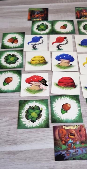 Partie de jeu le bois de Couadsous des Jeux Opla par Famille Tout à Dire (2)