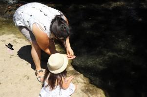 iniation savon naturel avec la Saponaire Famille Tout à Dire (2)