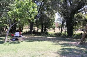 parc à Saint Anastasie sur Issole Famille Tout à Dire (1)