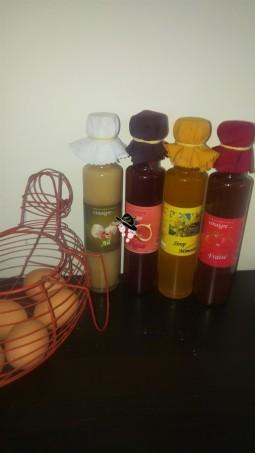 Vinaigres de Saveurs du Baou Famille Tout à Dire (1)